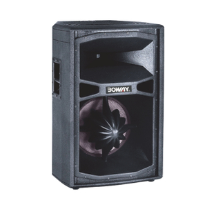 "BW-8150L 15"" two way speaker"