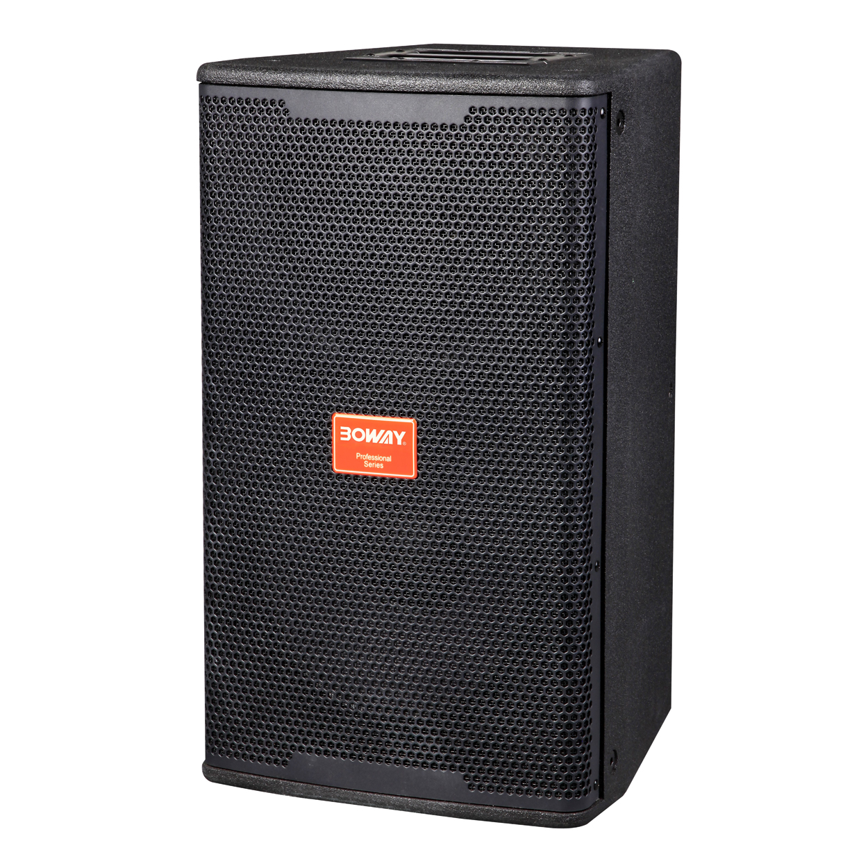 "KP610 10"" two way speaker"